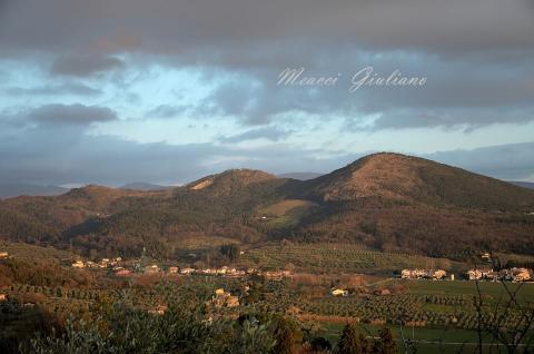 Monteferrato